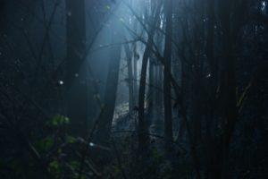 Khavis – Marathi Horror Story