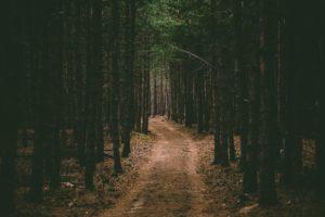 बांधाकडचा रस्ता – भयकथा